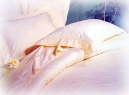 Silk Filled Duvet Covers